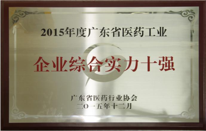 2015年度企业综合实力十强.png